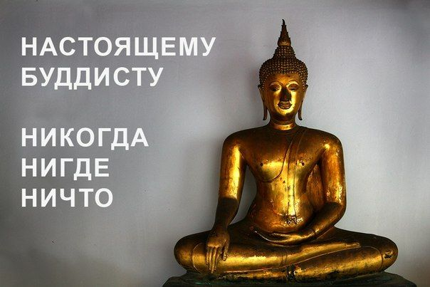 Поздравления для дзен-буддистов