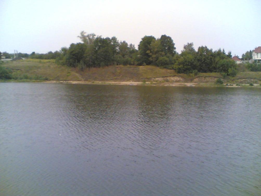 зеленый шум рыбалка